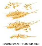 Wheat Oat Set Isolated On Whit...