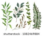 set of watercolor leaves  hand...   Shutterstock . vector #1082469884