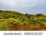 moss growing on the lava fields ... | Shutterstock . vector #1082516120