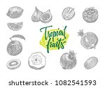 gray isolated engraved... | Shutterstock .eps vector #1082541593