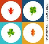 icon flat leaf set of linden ... | Shutterstock .eps vector #1082571023