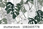 Stock vector floral seamless pattern green black and white split leaf philodendron plant with vines on white 1082605778