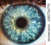 macro blue eyes color | Shutterstock . vector #1082736770