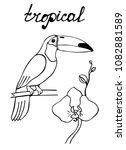 vector doodle sketch image of... | Shutterstock .eps vector #1082881589