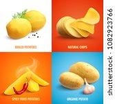 Vegan Realistic 2x2 Design...