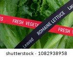 fresh vegetables. romaine... | Shutterstock . vector #1082938958