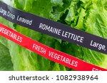 fresh vegetables. romaine... | Shutterstock . vector #1082938964