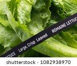fresh vegetables. romaine... | Shutterstock . vector #1082938970