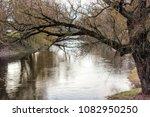 tree dark weather sky  dull | Shutterstock . vector #1082950250