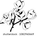 blooming magnolia  black and...   Shutterstock .eps vector #1082960669