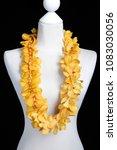 double yellow hawaii flowers... | Shutterstock . vector #1083030056