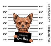 yorkshire terrier dog bad boy.... | Shutterstock .eps vector #1083043889