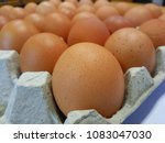 many eggs are in paper crates. | Shutterstock . vector #1083047030