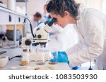 beautiful young woman scientist ... | Shutterstock . vector #1083503930