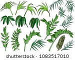 tropical palm jungle plants set | Shutterstock .eps vector #1083517010
