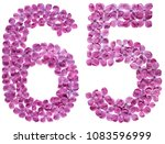 arabic numeral 65  sixty five ... | Shutterstock . vector #1083596999