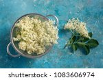 elderflower blossom flower in... | Shutterstock . vector #1083606974