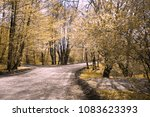 autumn road to the river | Shutterstock . vector #1083623393