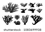 set of abstract coral... | Shutterstock .eps vector #1083699938