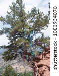Small photo of Annie's Wishing Tree Cancer Prayers Tied Wishes Glenwood Springs Colorado Doc Holliday Grave Trail