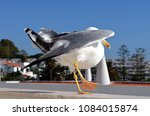 Small photo of Black-backed gull dancing