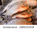 fish for sale | Shutterstock . vector #1084222418