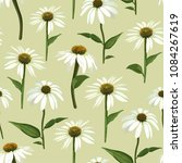 chamomile flowers and leaves.... | Shutterstock .eps vector #1084267619