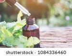 bottle of peppermint essential... | Shutterstock . vector #1084336460