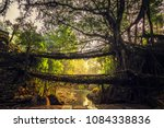 living roots bridge formed by... | Shutterstock . vector #1084338836