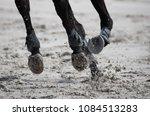 horse legs during a dinamic... | Shutterstock . vector #1084513283
