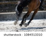 horse legs during a dinamic... | Shutterstock . vector #1084513310