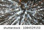 koh adang   ravi | Shutterstock . vector #1084529153