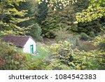 Stock photo autumn forest selva de irati fall beech jungle in navarra pyrenees of spain 1084542383
