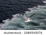 aegean archipelago   greece  ... | Shutterstock . vector #1084543076