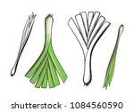 leek and green onion. hand... | Shutterstock .eps vector #1084560590
