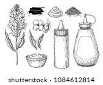 mustardi sauce set. vector... | Shutterstock .eps vector #1084612814
