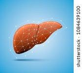 liver sign medical object art.... | Shutterstock .eps vector #1084639100