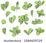 boxwood bush leaves | Shutterstock .eps vector #1084659239