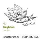 detailed hand drawn vector... | Shutterstock .eps vector #1084687766