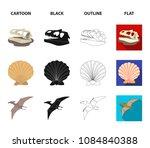 prehistoric shell  dinosaur... | Shutterstock .eps vector #1084840388