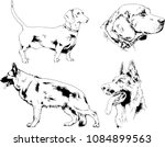 vector drawings sketches... | Shutterstock .eps vector #1084899563