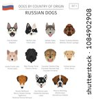dogs by country of origin.... | Shutterstock .eps vector #1084902908