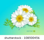 chamomile with leaves and dew.... | Shutterstock .eps vector #108500456