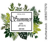 sale banner  poster with palm... | Shutterstock .eps vector #1085077070