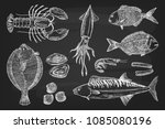 set different seafood  lobster  ... | Shutterstock .eps vector #1085080196
