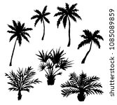 set of hand drawn palm trees... | Shutterstock .eps vector #1085089859