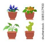 pseuderanthemum muscari set of... | Shutterstock .eps vector #1085117933