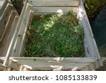 compost bin of wood filled with ... | Shutterstock . vector #1085133839