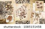 collection of designer oil...   Shutterstock . vector #1085151458