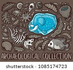 ancient fossils  bones  leaves... | Shutterstock .eps vector #1085174723